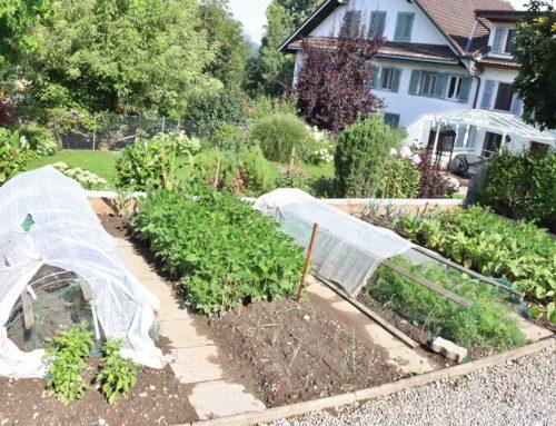 Zero Waste und plastikfreier Garten