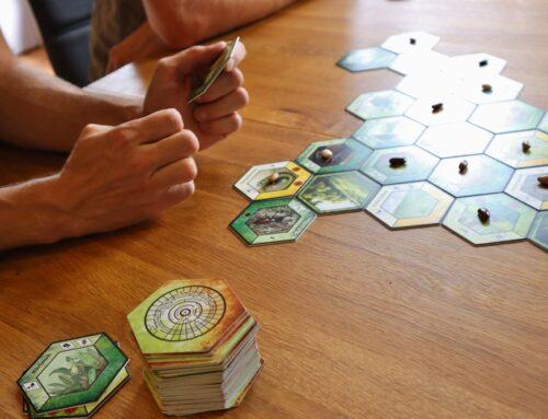 Nachhaltige Spiele: Spass- & Lernfaktor, kooperativ und sogar kompostierbar